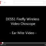 2014-06 youtube ear mite