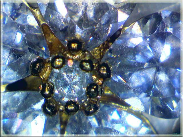 Microscope USB polarisant Firefly GT820 -- polarizer bijoux