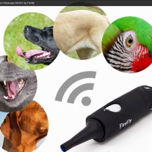 Firefly DE551 Video Otoscope vétérinaire - animals