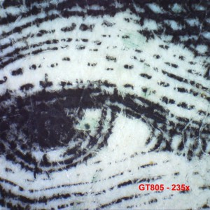 Firefly GT805 Microscope numérique 230X 5 MP _Measurements_2
